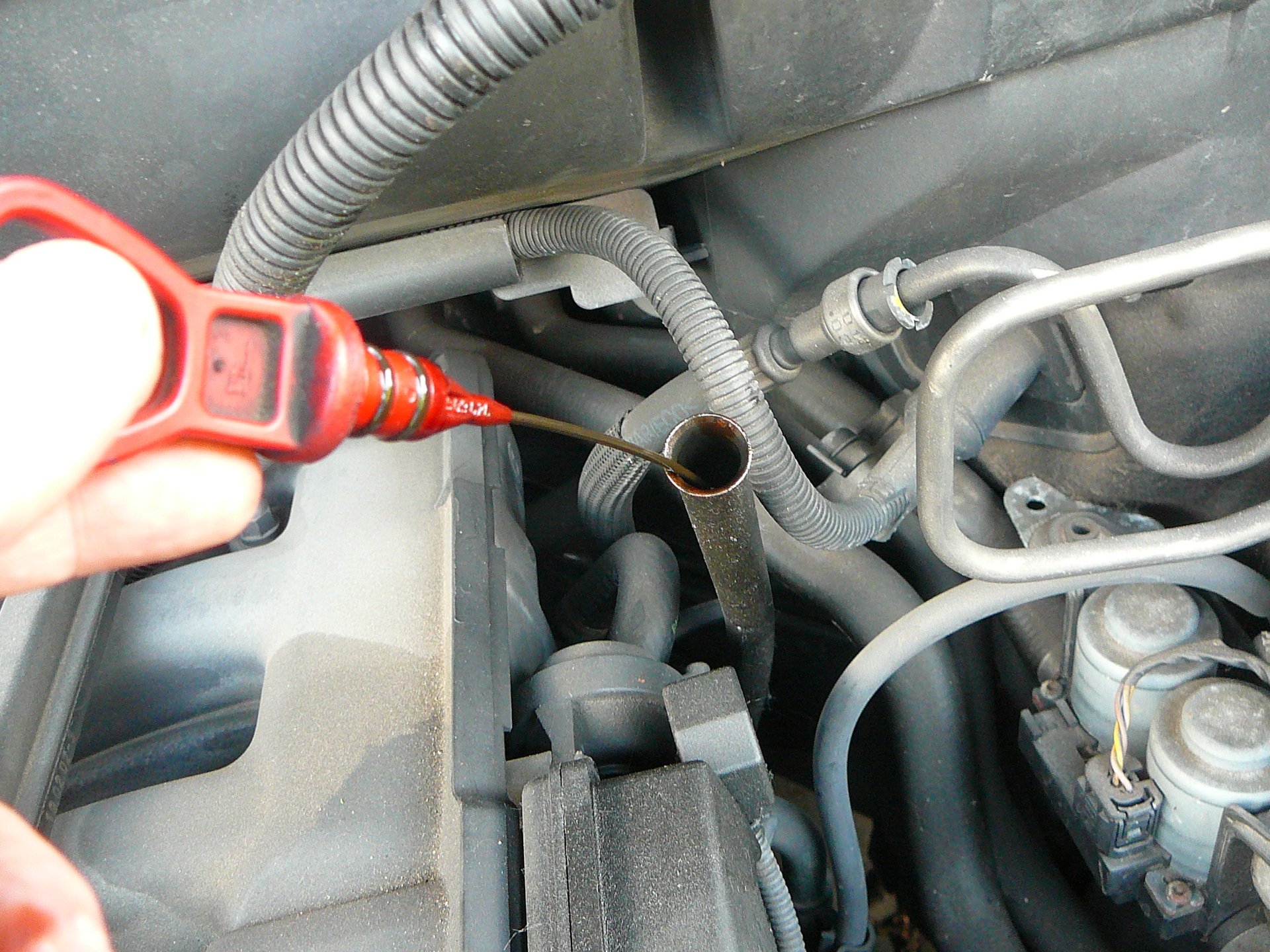 check engine oil to avoid car repair costs